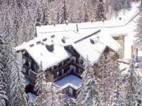 Отель в окружении хвойного леса