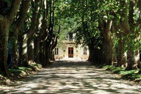 Le Château des Alpilles