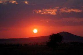 Националный парк Серенгети на закате