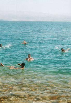 daniel израиль мертвое море