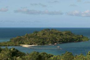 остров Дольфин